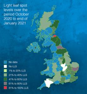 light_leaf_spot_uk