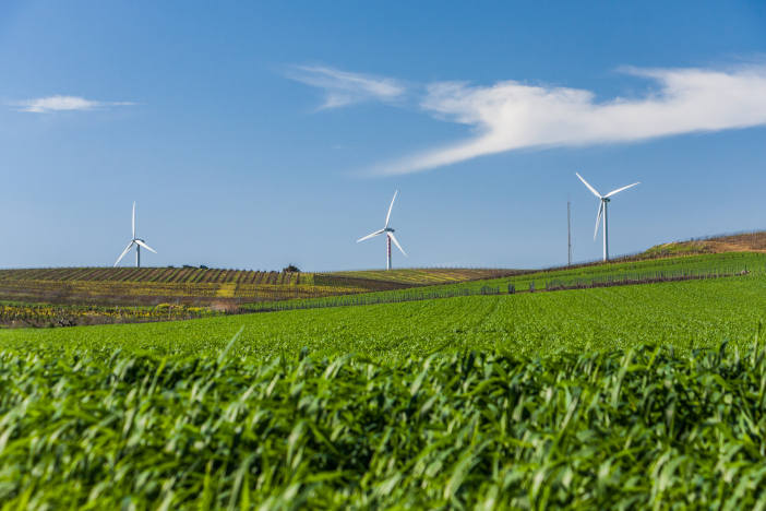 Green,Agriculture,Field,,Wind,Turbines,And,Clear,Blue,Sky.,Renewable
